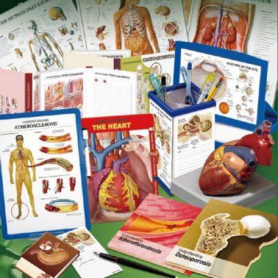 Анатомични постери, макети, симулатори и рекламни продукти